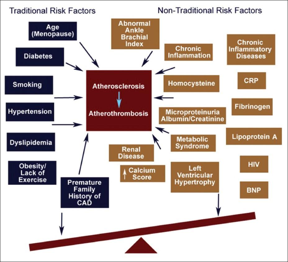 Ischemic Heart Disease Pathophysiology