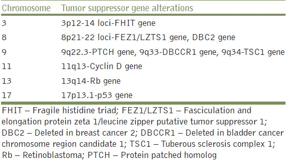 Table 2: Chromosomal instability leading to tumor suppressor gene alterations in bladder cancer