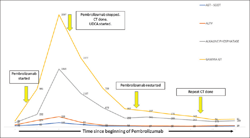 Figure 2: Graph showing serial trend of liver enzymes with clinical events marked by solid yellow arrows. (UDCA = ursodeoxycholic acid; CT = computed tomography). Notice normalization of liver enzymes to pre-treatment level at the end of observation period. X – axis represents time since Pembrolizumab was started